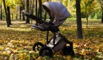 Pushchair Travel Systems By Brand