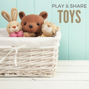 Play & Share Toys